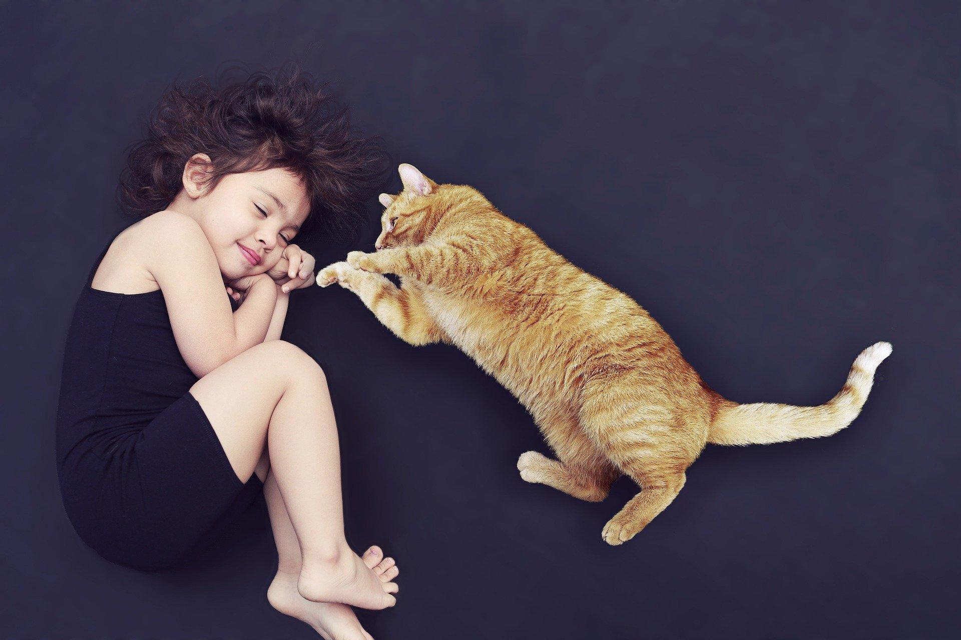 Read more about the article Bébé et animal de compagnie: trouver sa place